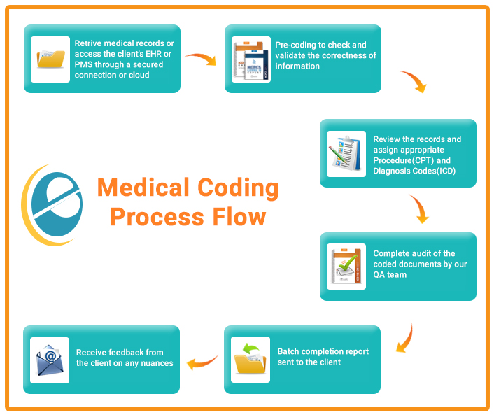 Medical Coding Talluri Technologies